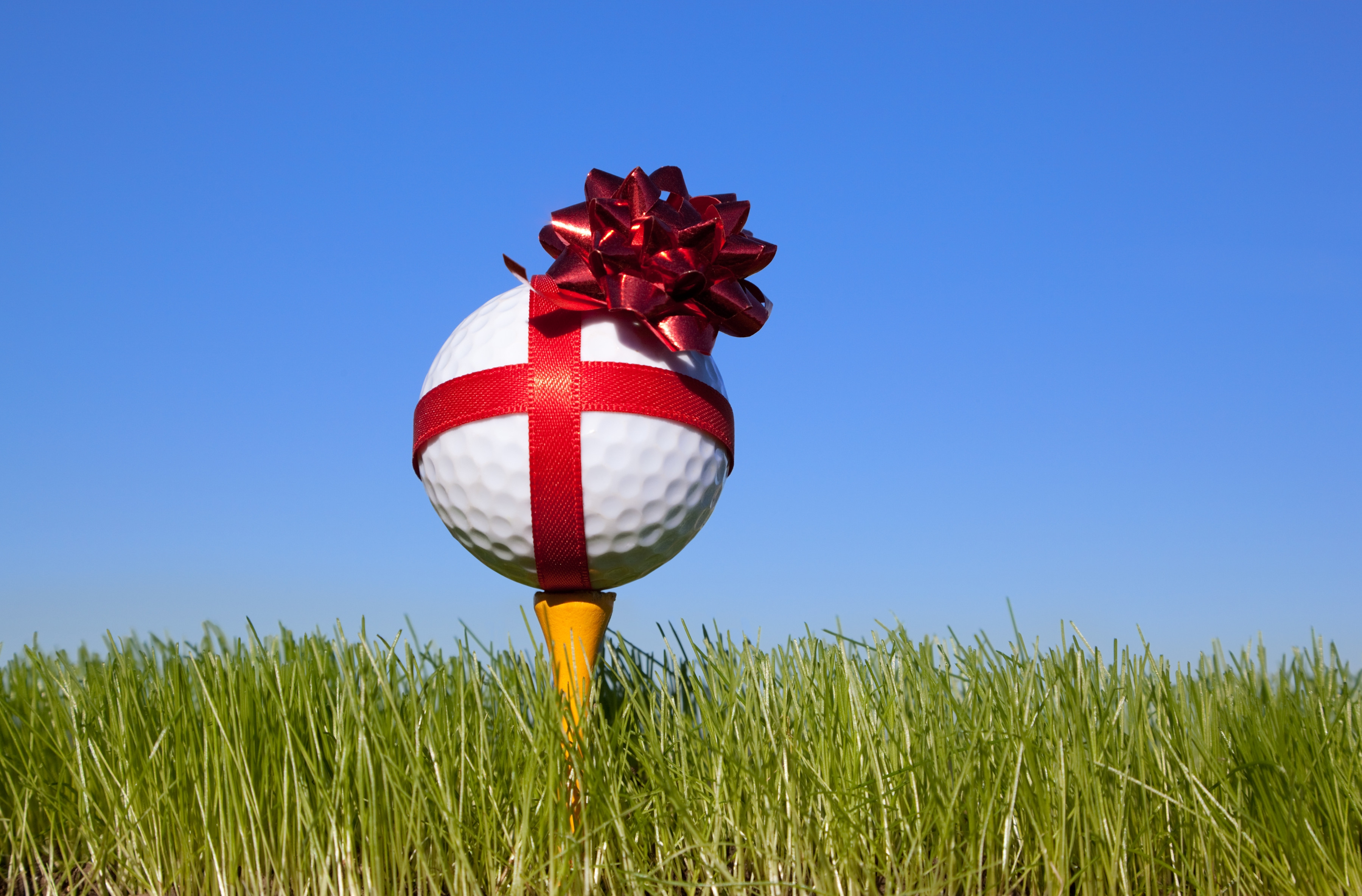 Image result for christmas golf gift certificate