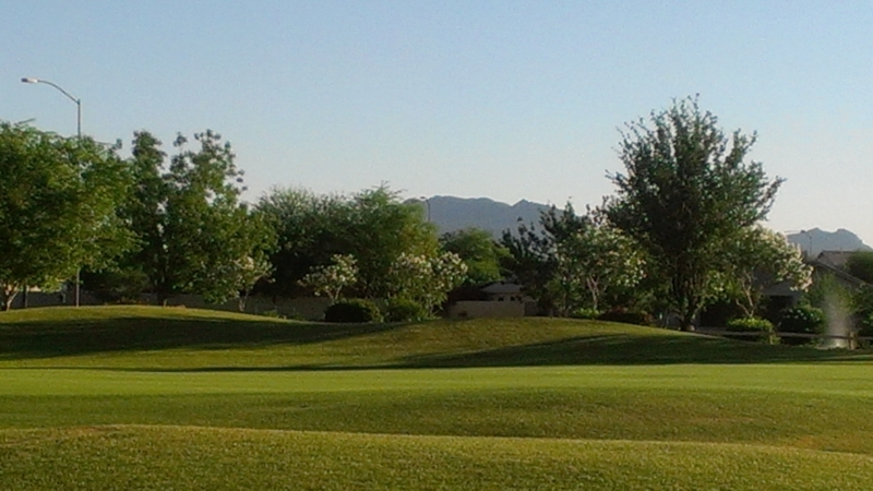 Views from Augusta Ranch Golf Club # 12 Green