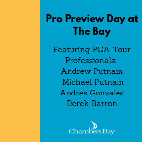 Pro Preview Day