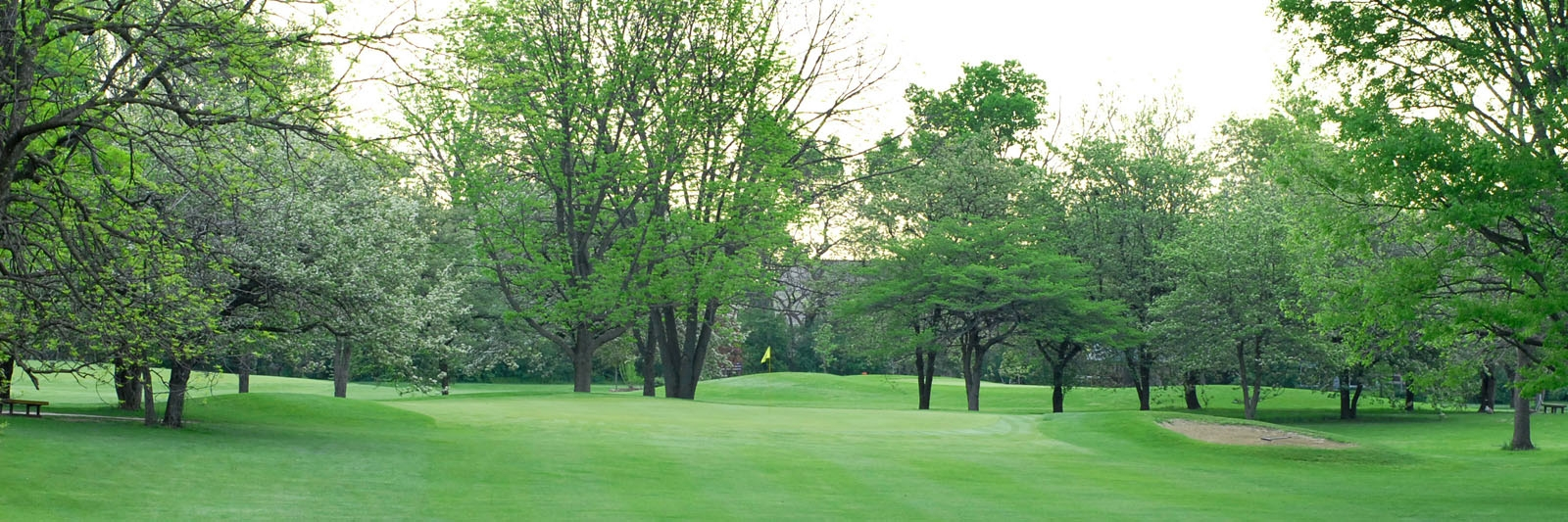 Columbus Municipal Golf