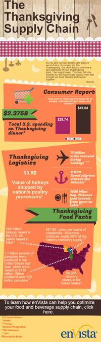 Thanksgiving 2013 Infographic
