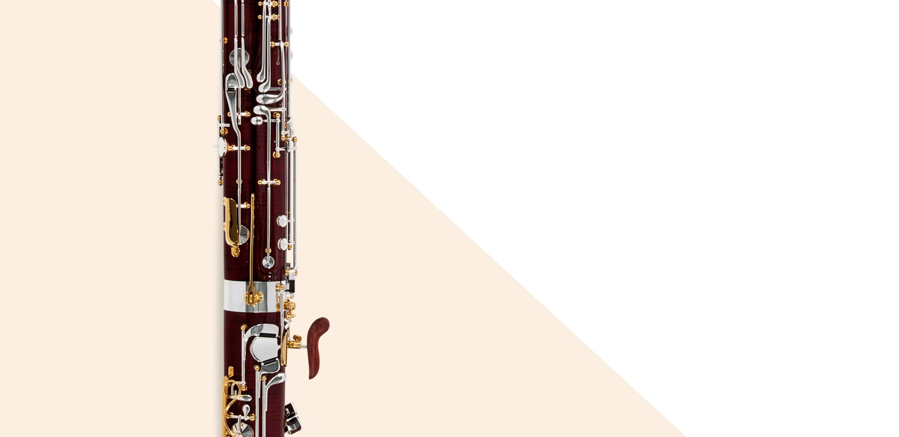 Introduction the Bassoon Collection