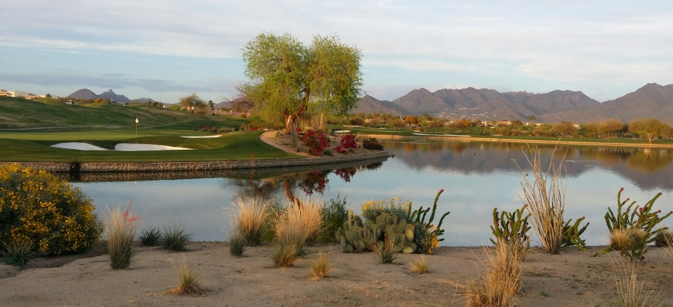 We LOVE Golf in the Desert!