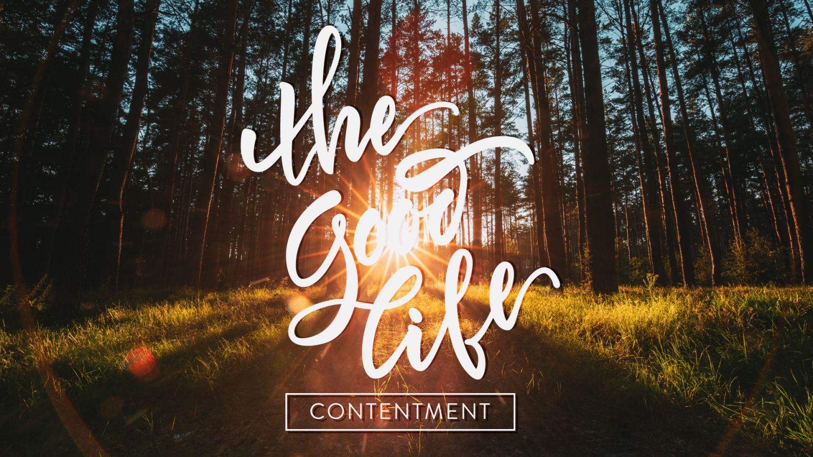 The Good Life: Contentment
