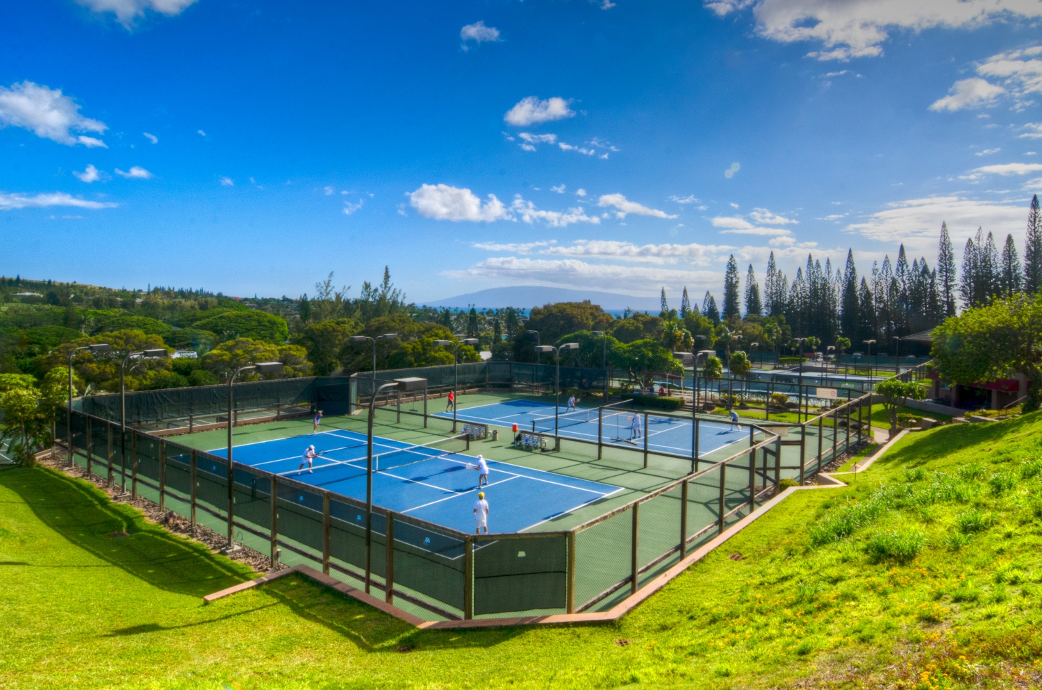 Kapalua Golf Resort: Kapalua Tennis Garden