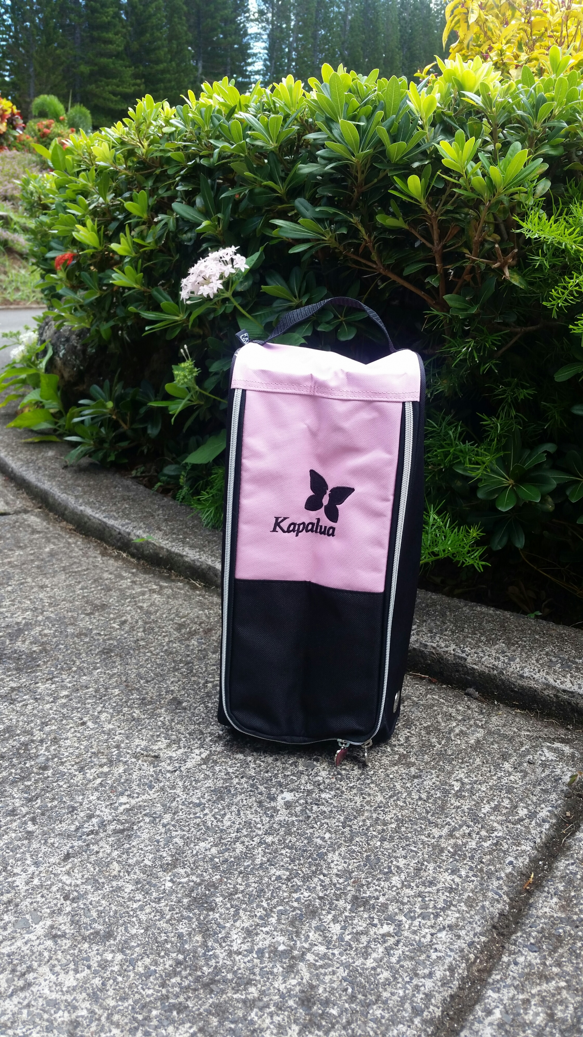 Ahead Shoe bag - pink