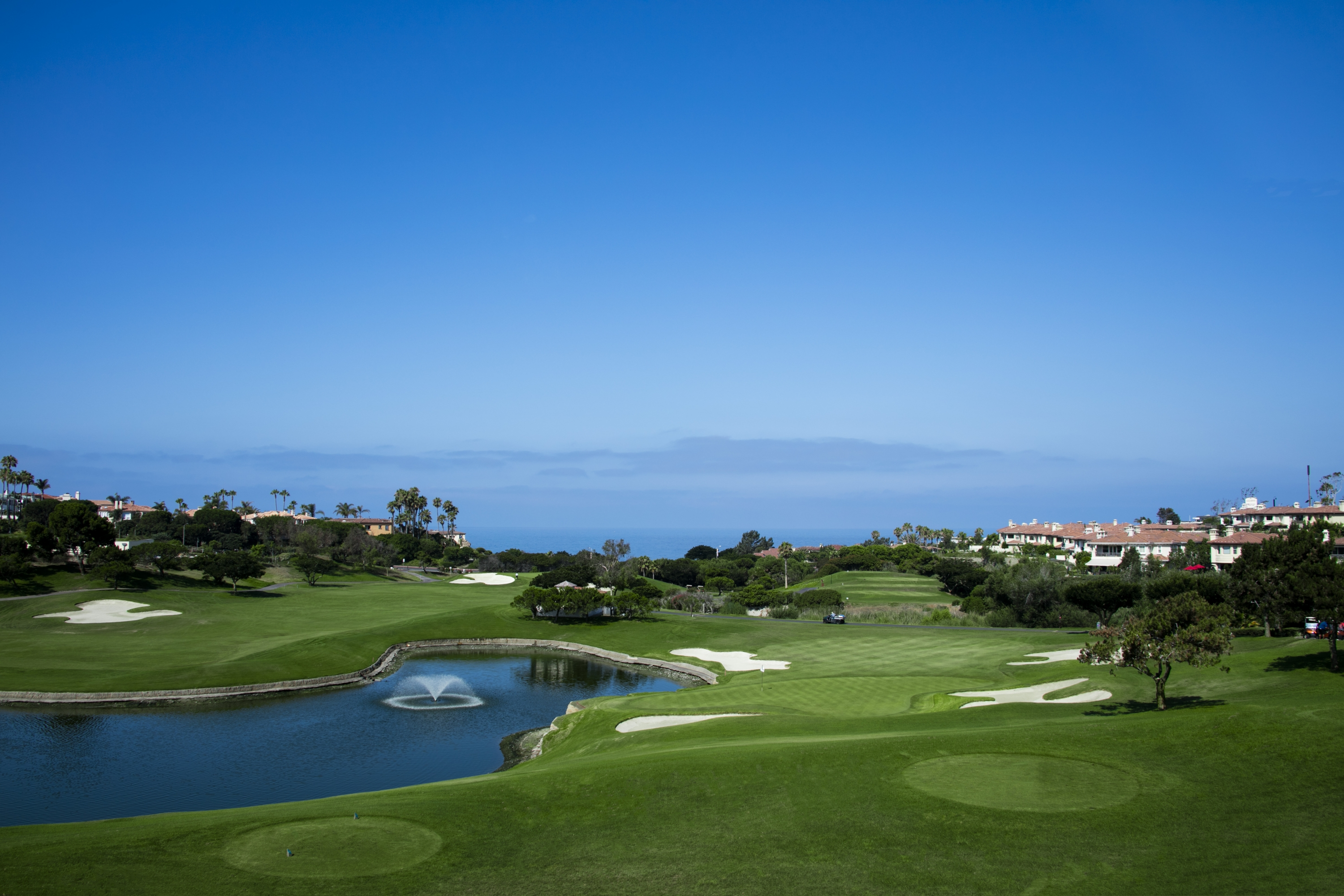 Monarch Beach Golf Links Understanding The Turf At