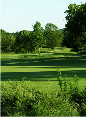 Saddle Creek Golf Club Course Tour: Hole 9