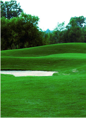 Saddle Creek Golf Club Course Tour: Hole 12