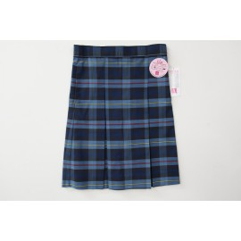 Plaid #41 Skirt