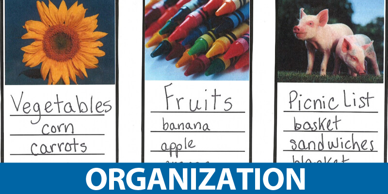 Trait of Organization Mini-Lessons