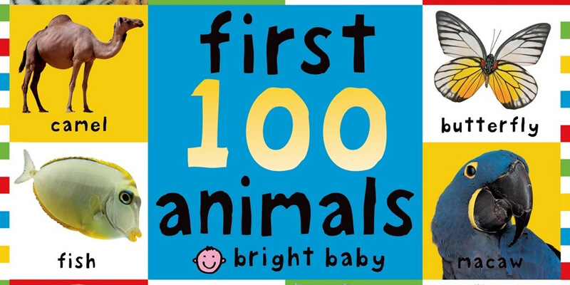Six Traits Mentor Text Labeling First 100 Animals