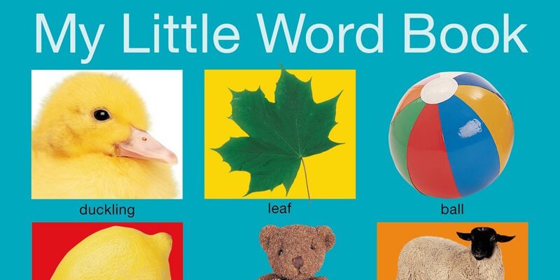 Six Traits Mentor Text Labeling My Little Word Book