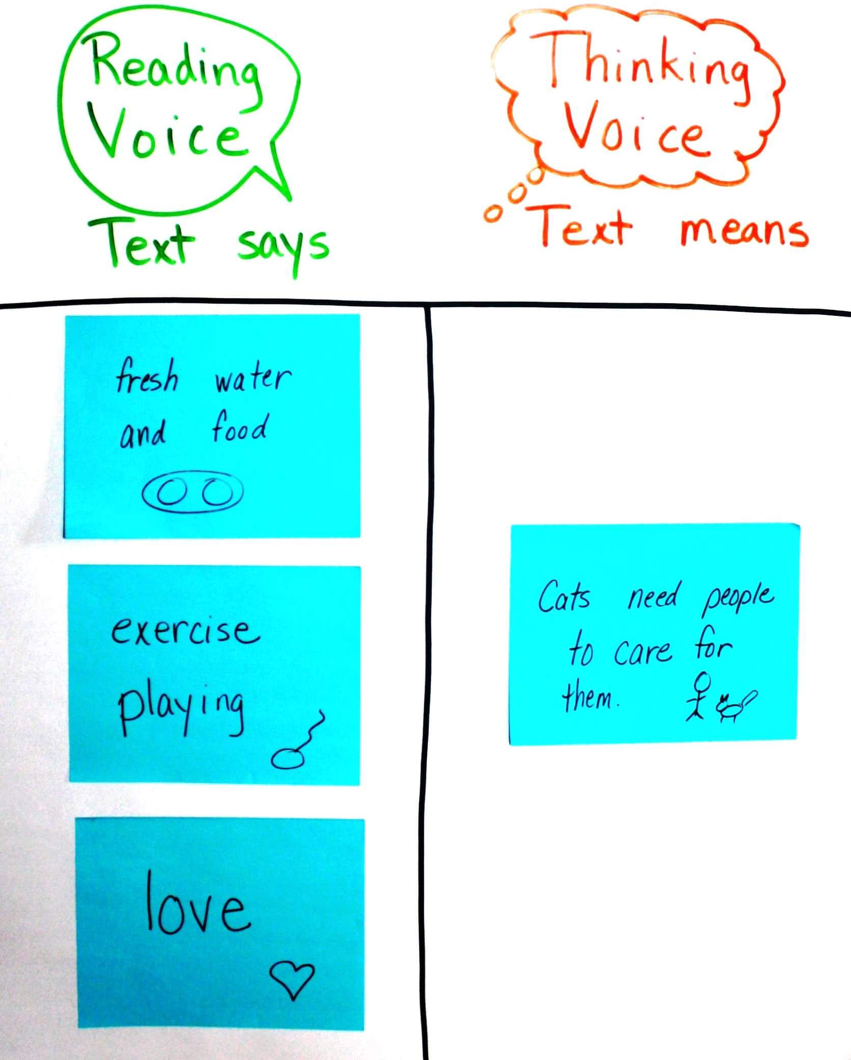 Annotation Sticky Notes: Cat Care Example