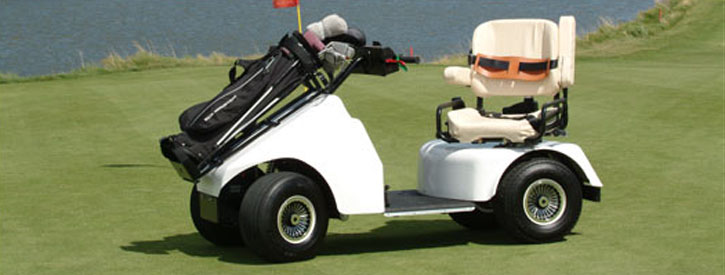 Springfield Park District Golf Courses Special Needs Golfers