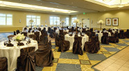 Weddings & Banquets