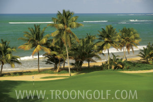 Bahia Beach Resort & Golf Club