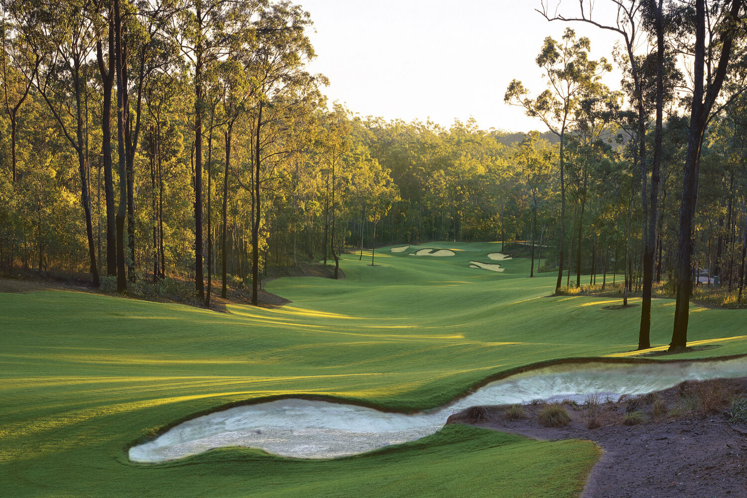 Brookwater golf country club brisbane golf course for Landscaping courses adelaide