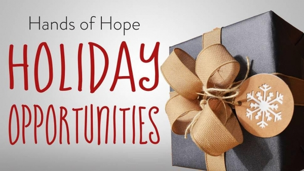 Holiday Opportunities