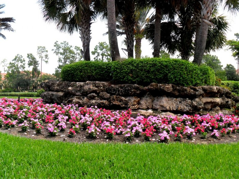 Landscaping - Floral Painting