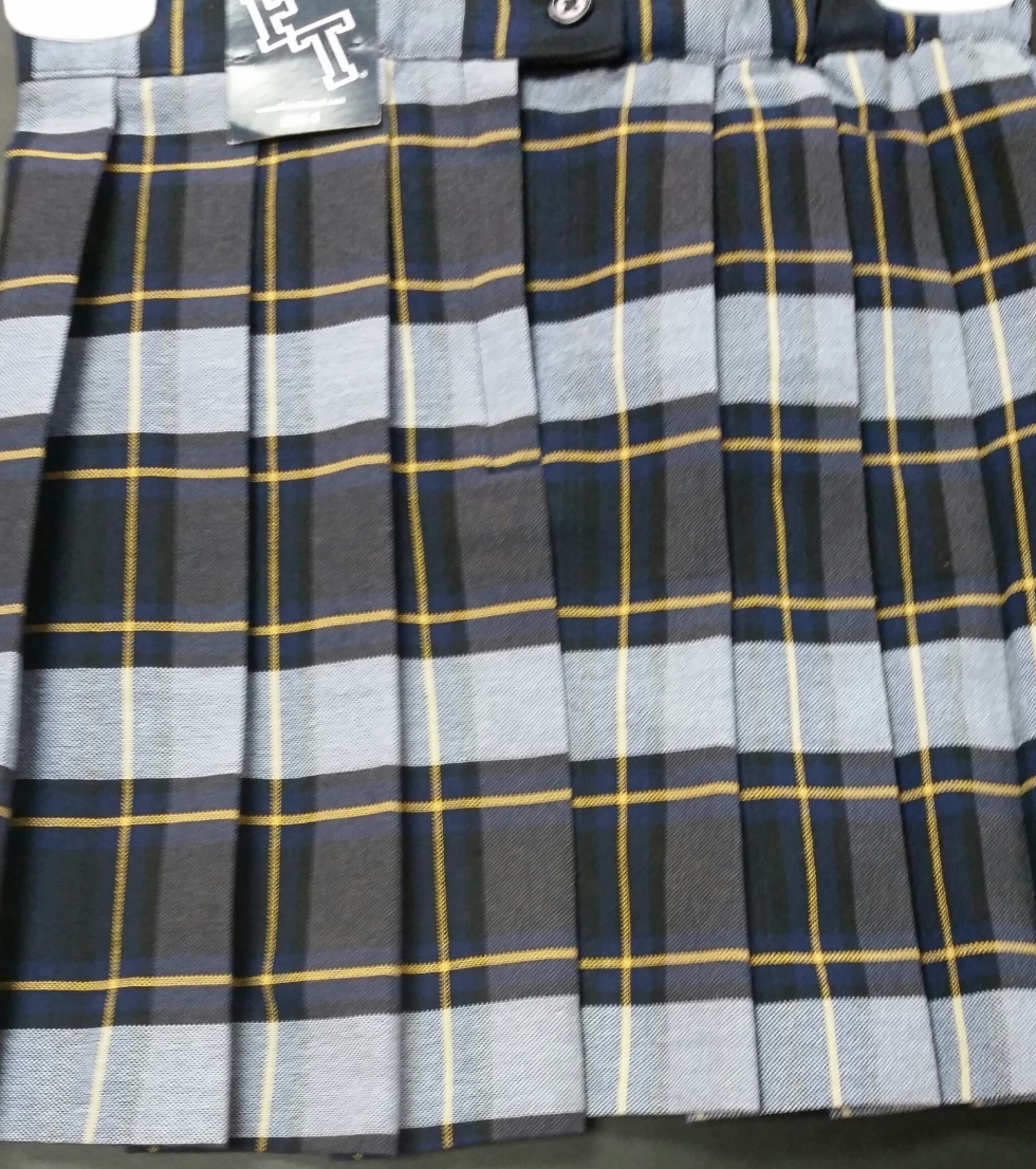 Navy and Gold  Plaid Skirt