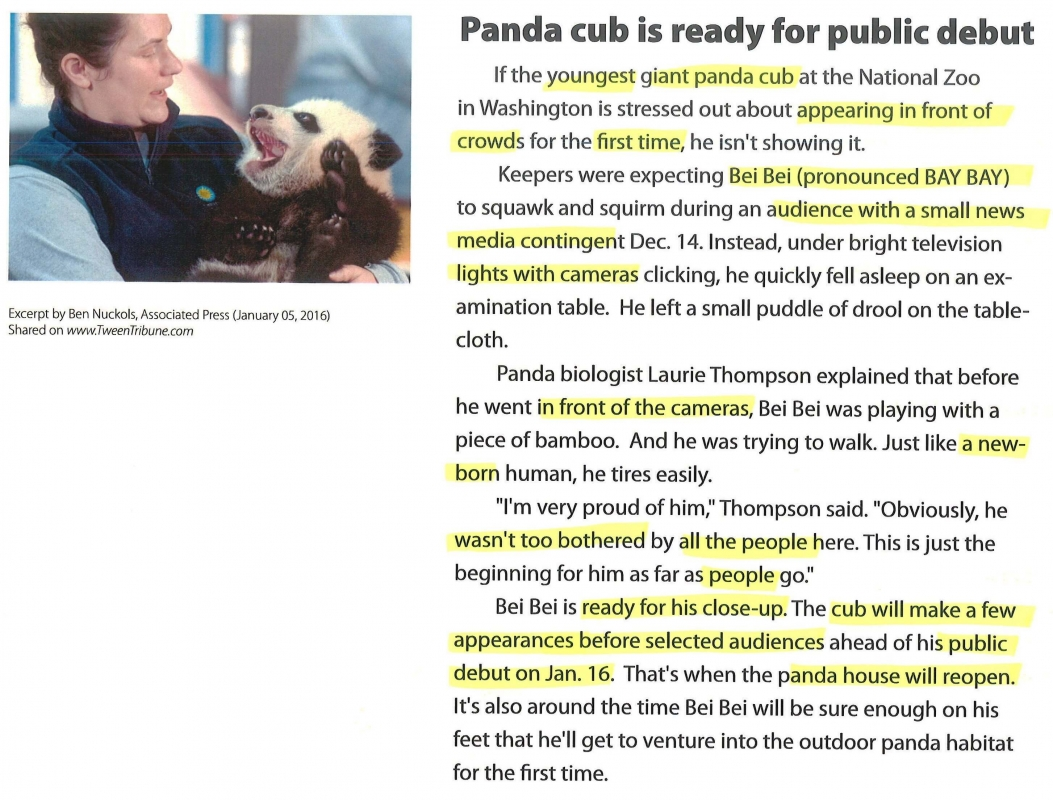 Panda Cub article for finding the main idea