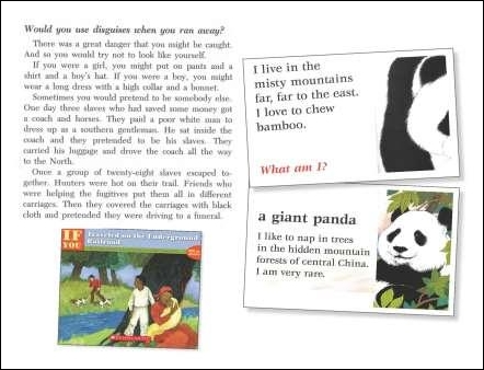Sample Mentor Texts for Question & Answer Template