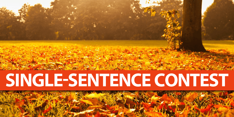 Hold a Fall-Walk Sentence Contest