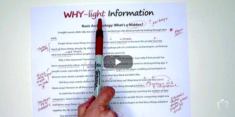 Go Beyond Highlighting--Expect Why-Lighting