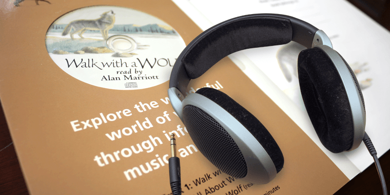 Using Audio Books to Reinforce Visualization