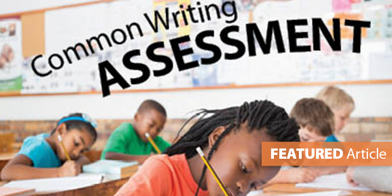 Develop School-Wide/District-Wide Writing Assessments