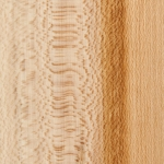 Sycamore (QS) 1/8""