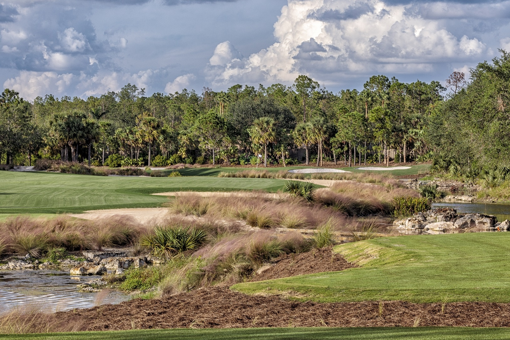 Tiburón Golf Club's Black Course Reopens To Rave Reviews After After