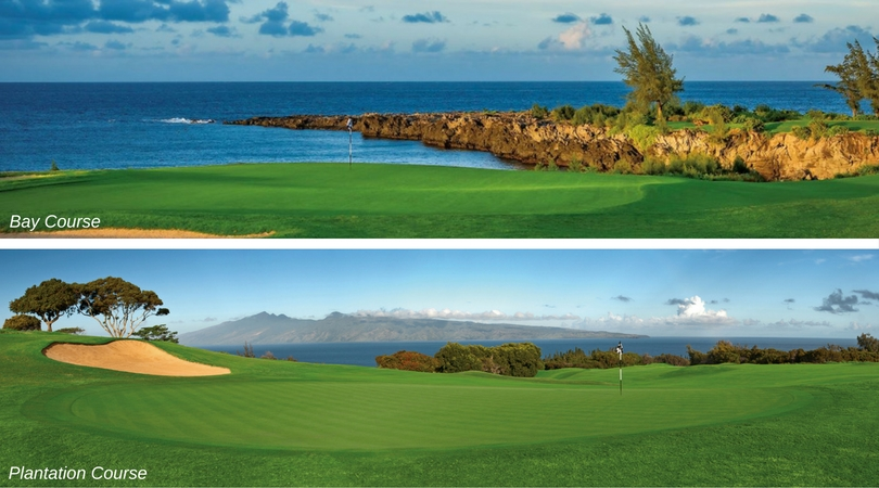 Kapalua Plantation and Bay Courses Recognized for Environmental Excellence
