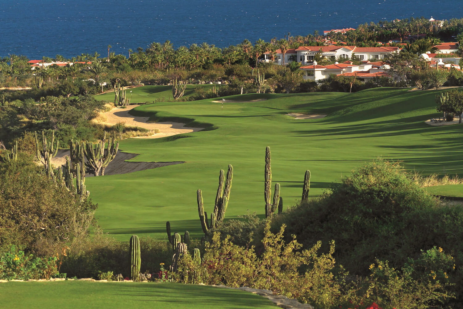 Palmilla Golf Club Debutes New RoboGolfPro® Teaching Aid