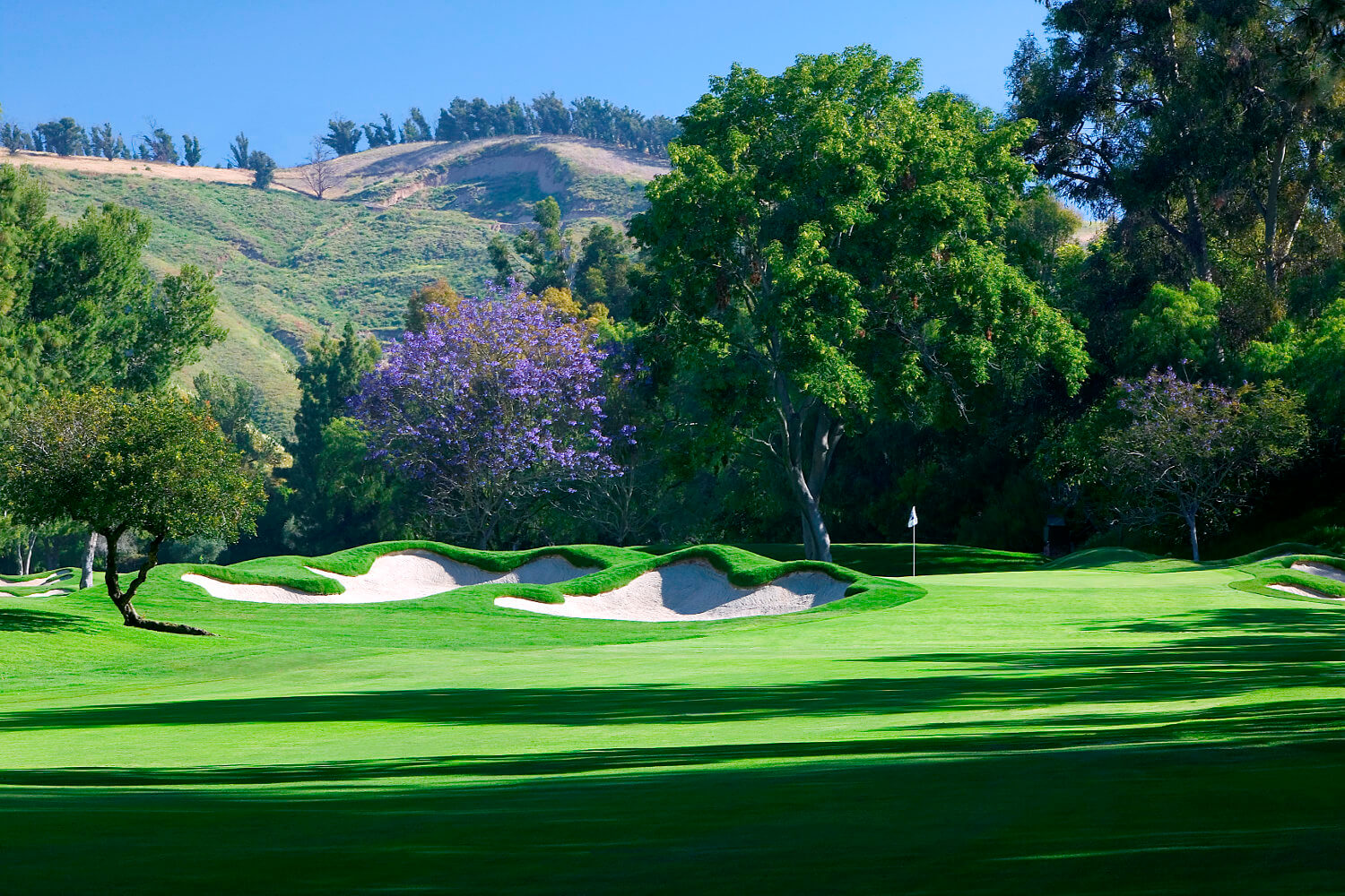 The Saticoy Club Undergoing Multi-Phase Golf Course Renovation