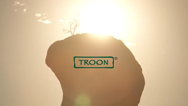 About Troon